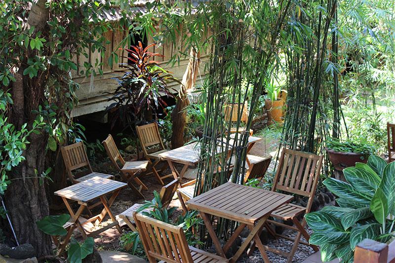 Immersion dans un café à l'ambiance zen à Buôn Ma Thuột, la capitale (autoproclamée !) du café vietnamien.